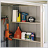 Garden Shed 8 x 3 ft Steel Storage Shed