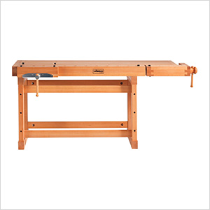 SB119 Professional Workbench