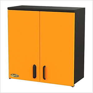 """2-Door 30"""" Wall Cabinet"""
